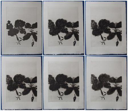 Radierung Und Aquatinta Zao - 6 états de la gravure