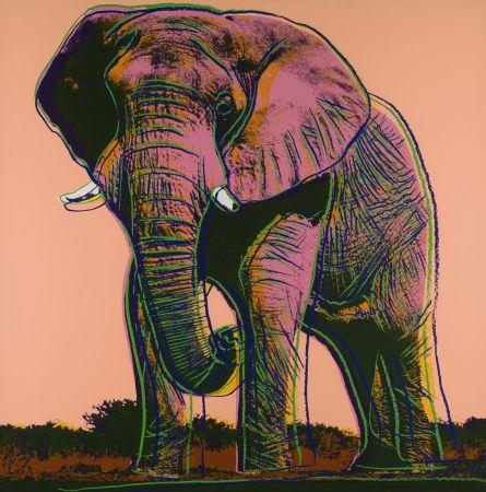 Siebdruck Warhol - African Elephant (FS II.293)