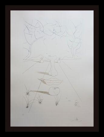 Stich Dali - Aurelia Visage Surrealiste
