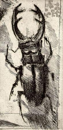 Illustriertes Buch Calandri - Ballades Et Rondeaux Du Testament Villon