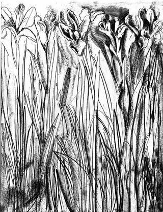 Stich Dine - Black & White Flowers I