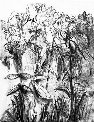 Stich Dine - Black & White Flowers IV