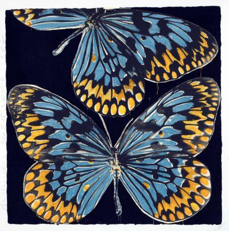Siebdruck Sultan - Butterflies
