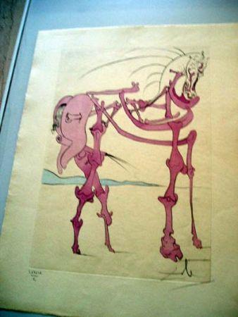 Stich Dali - Cheval En Rose (Quevedos Visioner)