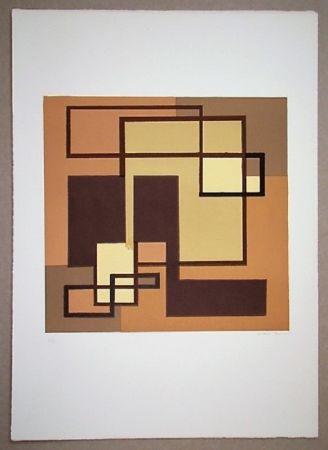 Lithographie Radice - Compositione astratta marrone