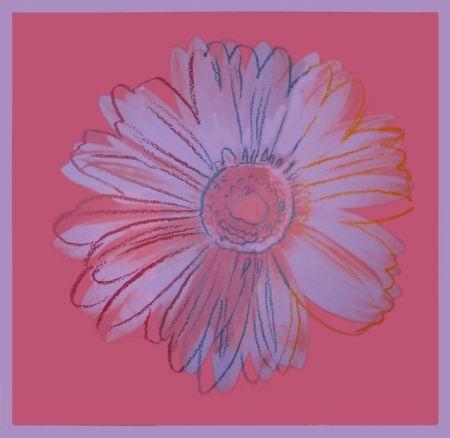 Siebdruck Warhol - Daisy, ca