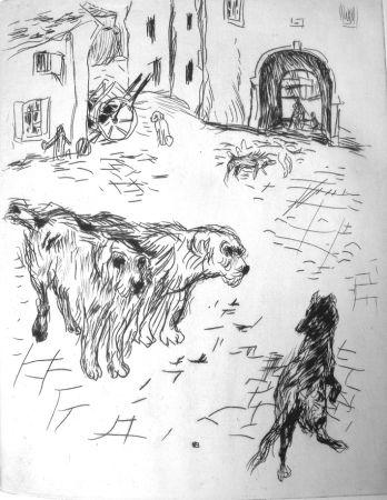 Illustriertes Buch Bonnard - Dingo