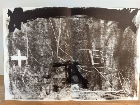 Illustriertes Buch Tapies - DLM210