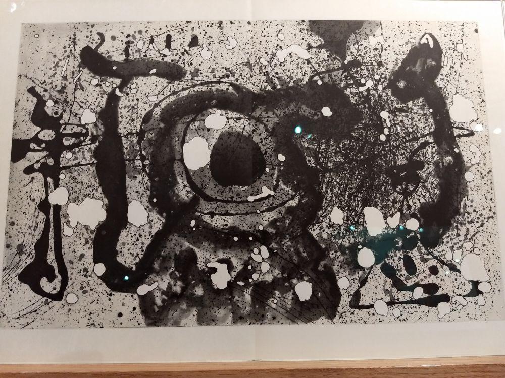 Illustriertes Buch Miró - DLM 121 122