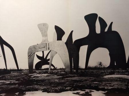 Illustriertes Buch Calder - DLM 190