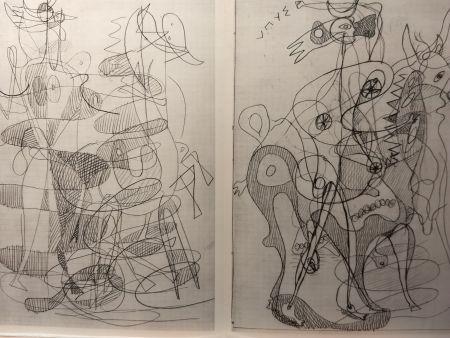 Illustriertes Buch Braque - DLM 71-72