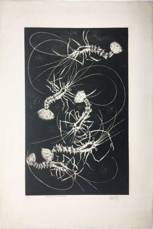 Aquatinta Avati - Farandole de crevettes (1958)