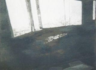 Siebdruck Tuymans - Fenêtres