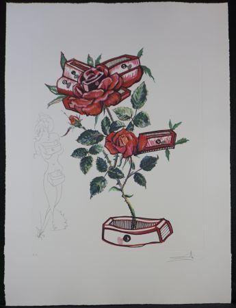 Stich Dali - Florals Rose