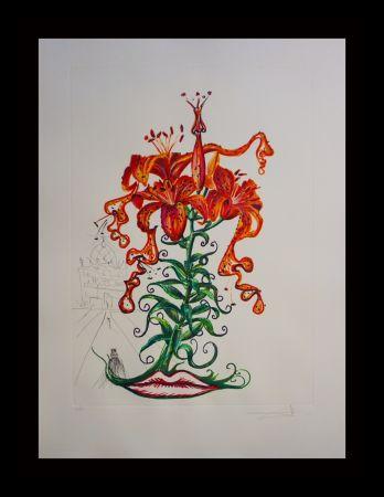 Stich Dali - Florals Tiger Lilies