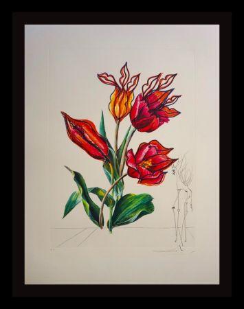 Stich Dali - Florals Tulips Girafe en Feu