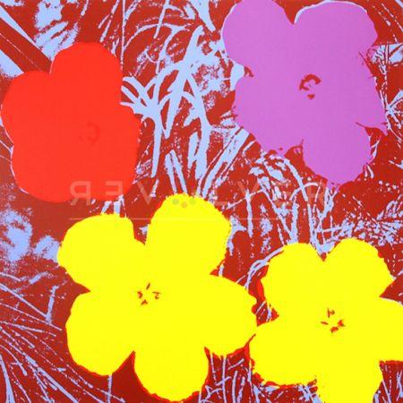 Siebdruck Warhol - Flowers (FS II.71)