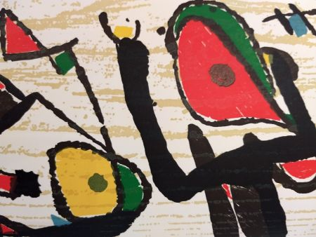 Illustriertes Buch Miró - Graveur 3