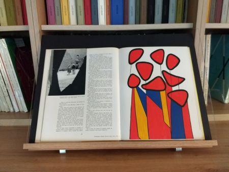 Illustriertes Buch Calder - Hommage