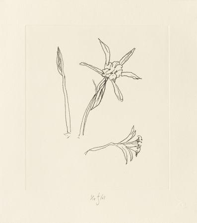 Stich Flanagan - Ibiza Meadow Flower