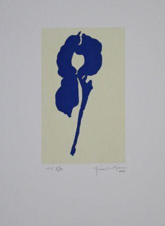 Aquatinta Hernandez Pijuan - Iris Blau Viii / Blue Iris Viii