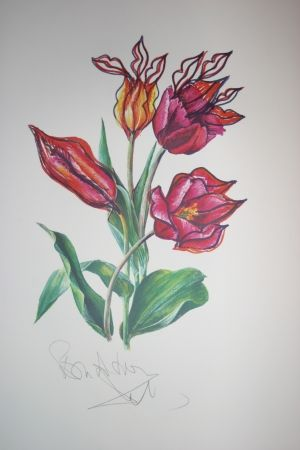 Lithographie Dali - Kissing Tulips (surrealistic flowers)
