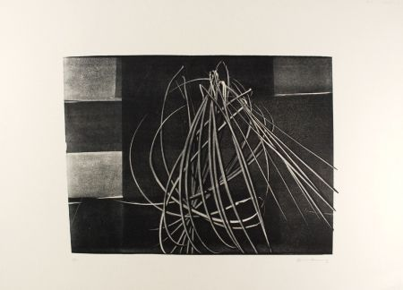 Lithographie Hartung - L-4-1976