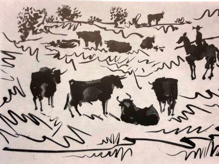 Kaltnadelradierung Picasso - La Tauromaquia