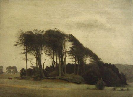 Mezzotinto Ilsted - Landscape at Fredensborg
