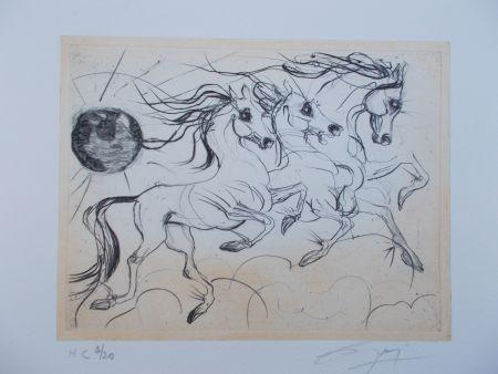 Stich Guiny - Les chevaux de Jupiter