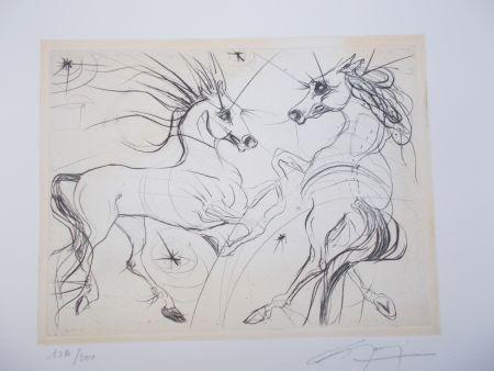 Stich Guiny - Les chevaux du printemps