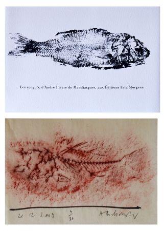 Illustriertes Buch Alechinsky - Les rougets