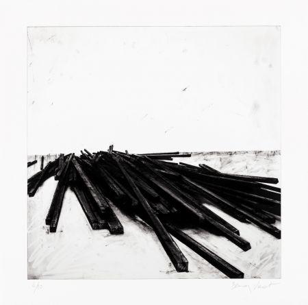 Siebdruck Venet - Lignes droites / désordre 02