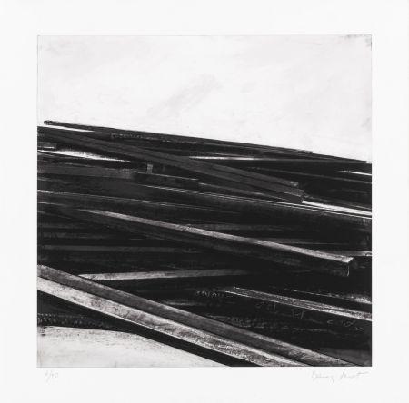 Siebdruck Venet - Lignes droites / désordre 04