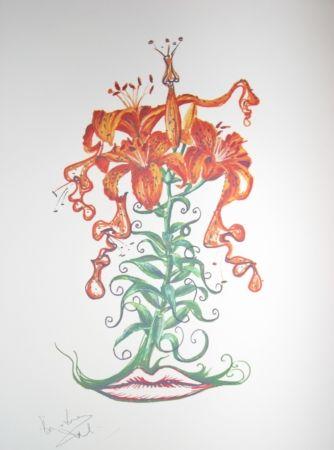 Lithographie Dali - Lilium aurancacium (surrealistic flowers)