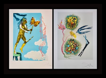 Lithographie Dali - Magic Butterfly & The Dream suite