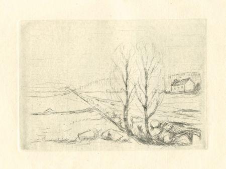 Kaltnadelradierung Munch - Norwegische Landschaft / Norwegian Landscape