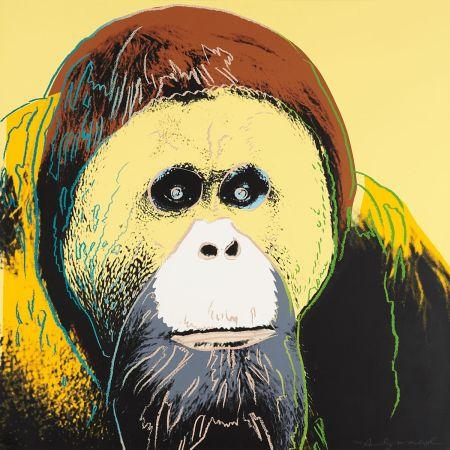 Siebdruck Warhol - Orangutan (FS II.299)
