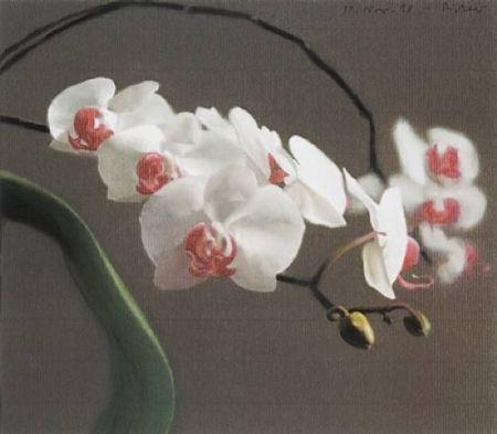 Offset Richter - Orchid IV