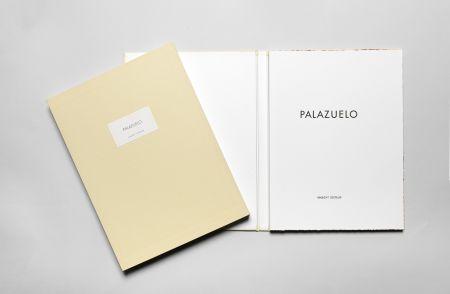 Illustriertes Buch Palazuelo - Palazuelo DLM 184 de luxe signé