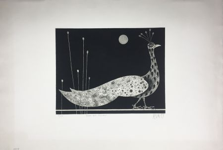 Mezzotinto Avati - PAON AUX ROSEAUX (1958)