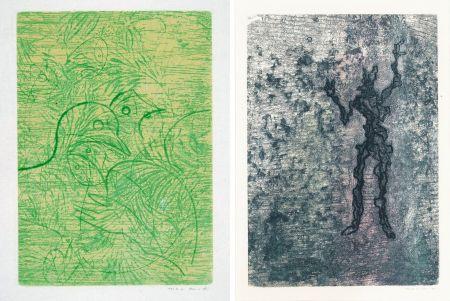 Radierung Und Aquatinta Ernst - PAROLES PEINTES (1959) 2 GRAVURES ORIGINALES DE MAX ERNST (10 gravures originales de Max Ernst, Jacques Hérold, Wifredo Lam, Sébastian Matta et DorotheaTanning. Poèmes d'Alain Bosquet).