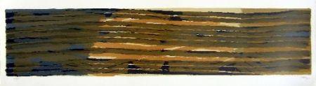 Lithographie Ubac - Paysage Aux Sillons 5