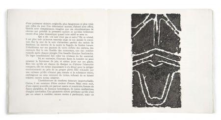 Illustriertes Buch Ubac - Pierres réfléchies