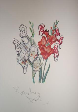 Lithographie Dali - Pirates Gladioli (surrealistic flowers)