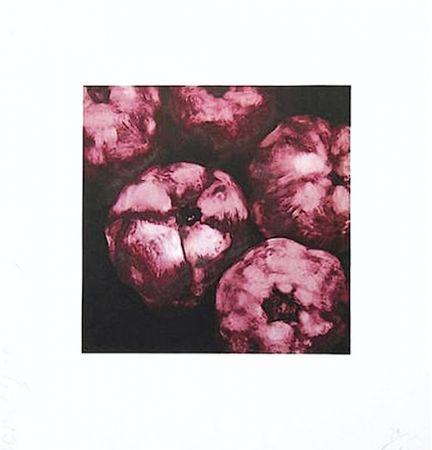 Siebdruck Sultan - Pomegranates