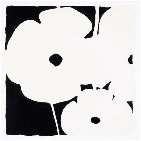 Siebdruck Sultan - Poppies, June 3, 2011 (White)
