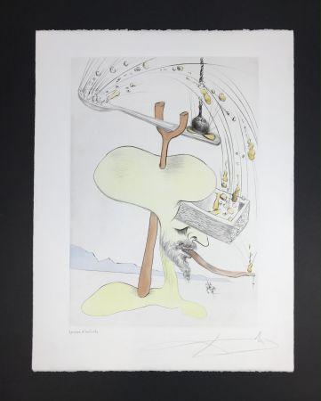 Radierung Und Aquatinta Dali - Quevedos Visiones
