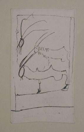 Stich Beuys - Riesenziegen