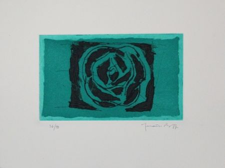 Radierung Und Aquatinta Hernandez Pijuan - Rosa Verda / Green Rose